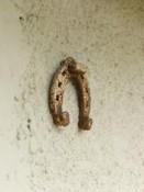 rusty horseshoe