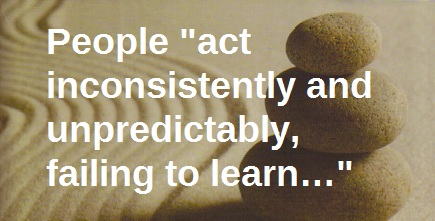 "People ""act inconsistently and unpredictably, failing to learn…"""