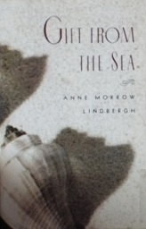 Photograph of a shell is on cover of book